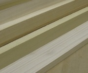 picture of poplar samples